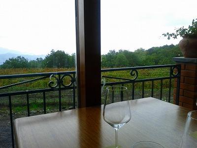 エトナのワイナリーの前に広がる葡萄畑