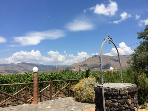 タオルミーナ発着エトナ山有名ワイナリー訪問ツアー